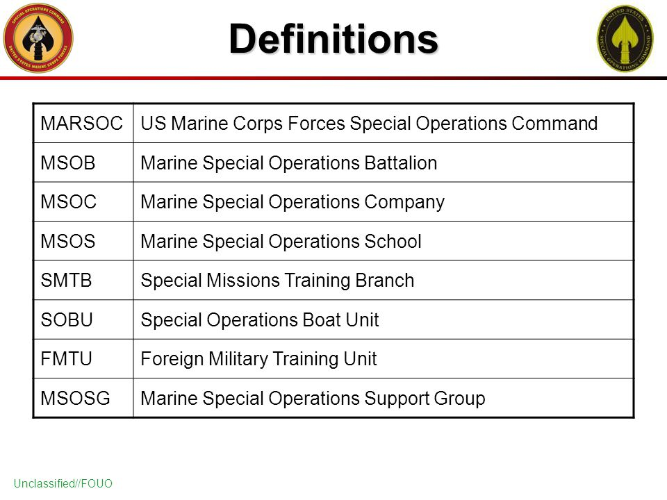 Us Marine Corps Forces Special Operations Command Marsoc Ppt