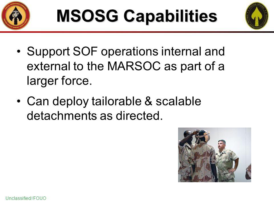 airasia internal and external capabilities