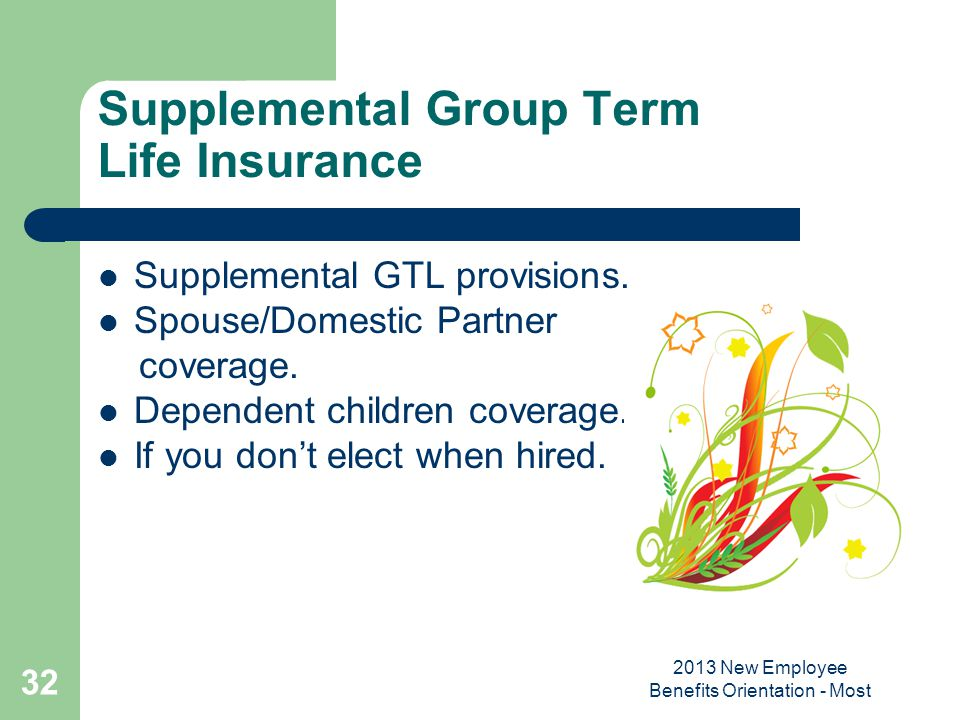 Supplemental Group Term Life Insurance