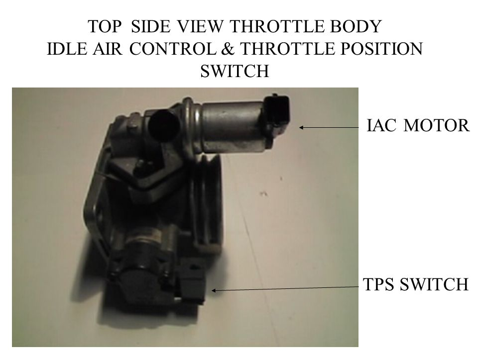 TOP SIDE VIEW THROTTLE BODY IDLE AIR CONTROL & THROTTLE POSITION