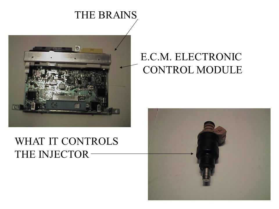 THE BRAINS E.C.M. ELECTRONIC CONTROL MODULE WHAT IT CONTROLS THE INJECTOR