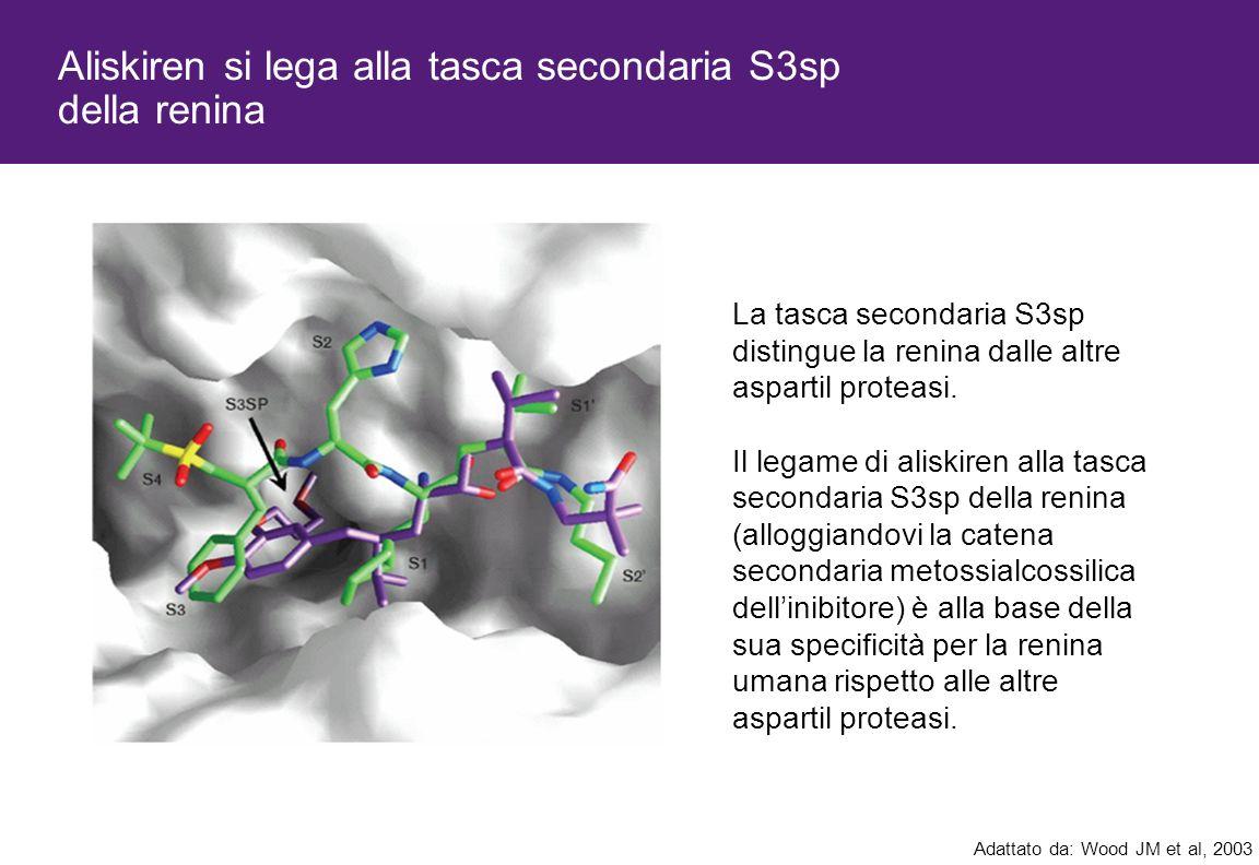 Aliskiren si lega alla tasca secondaria S3sp della renina