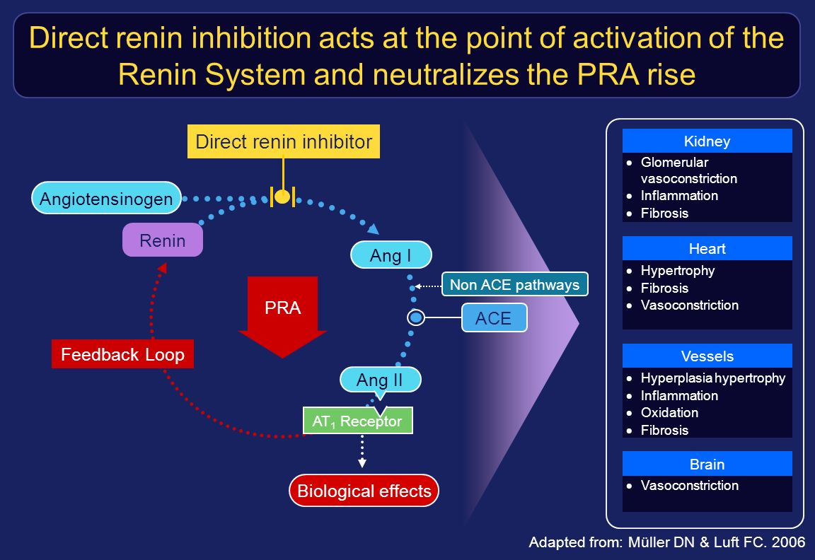 Direct renin inhibitor