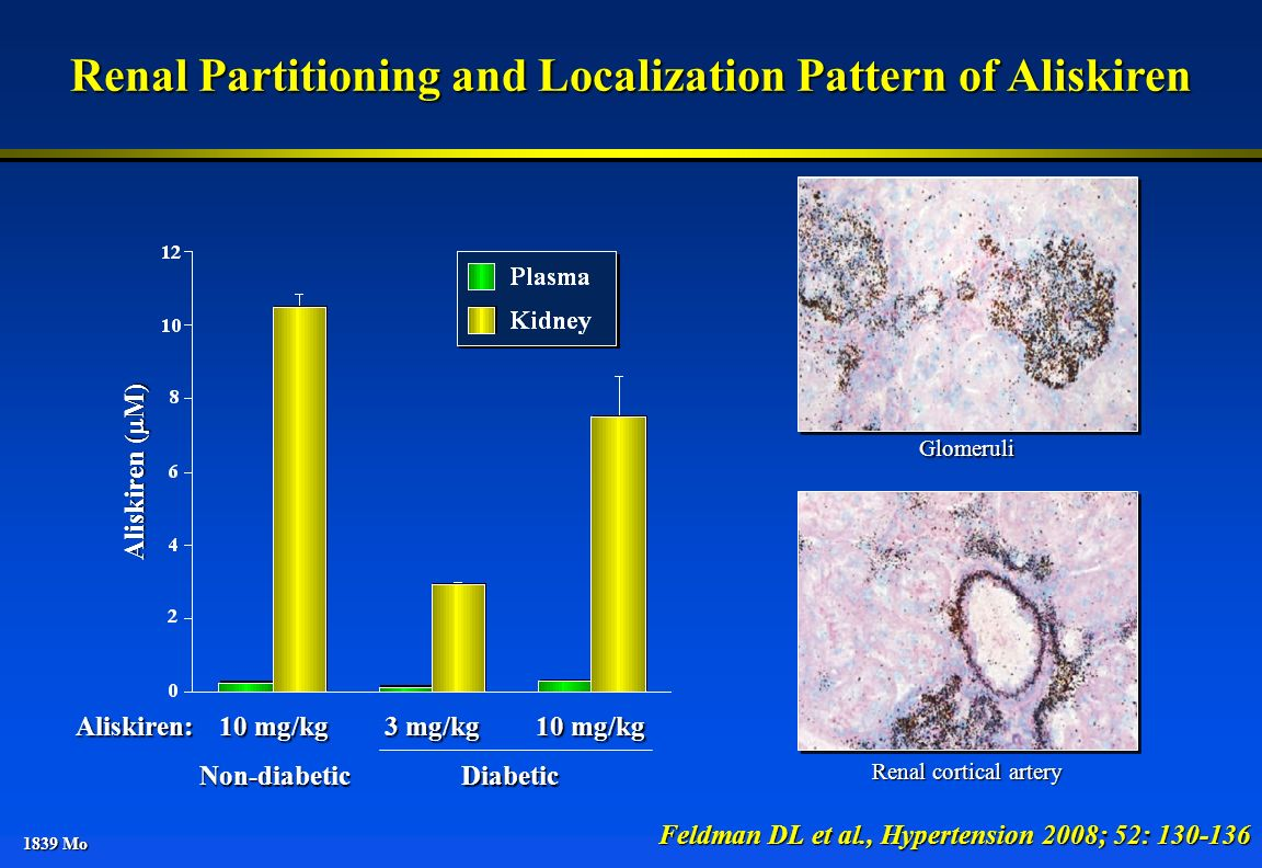 Renal Partitioning and Localization Pattern of Aliskiren