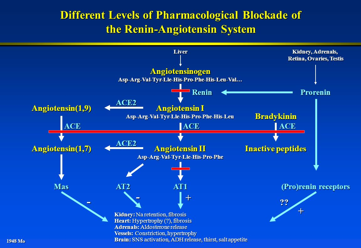 Different Levels of Pharmacological Blockade of