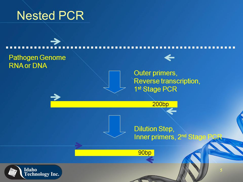 FilmArray™ - Nested Multiplex PCR for Multi-pathogen Screening - ppt video online download