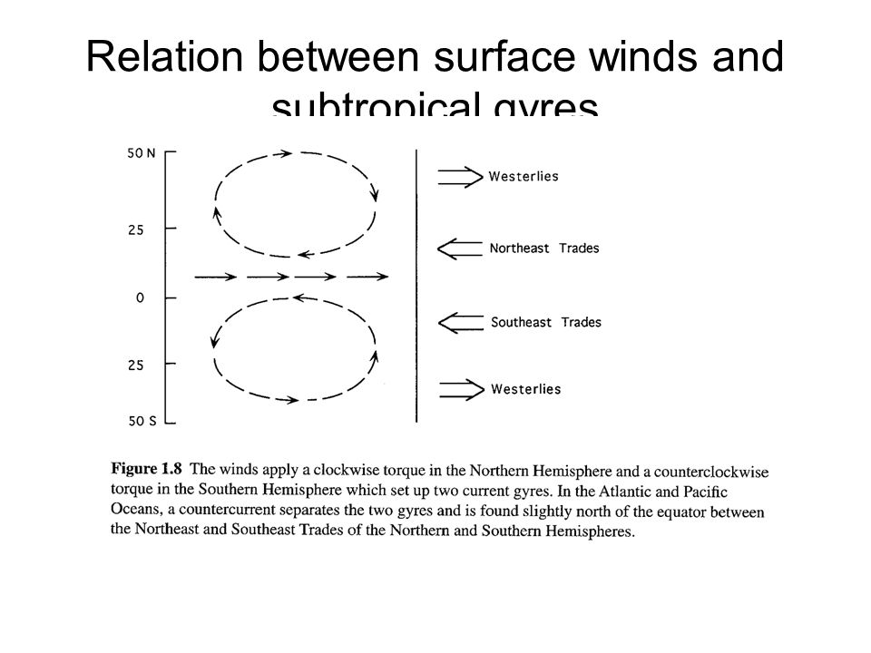 Relation between surface winds and subtropical gyres