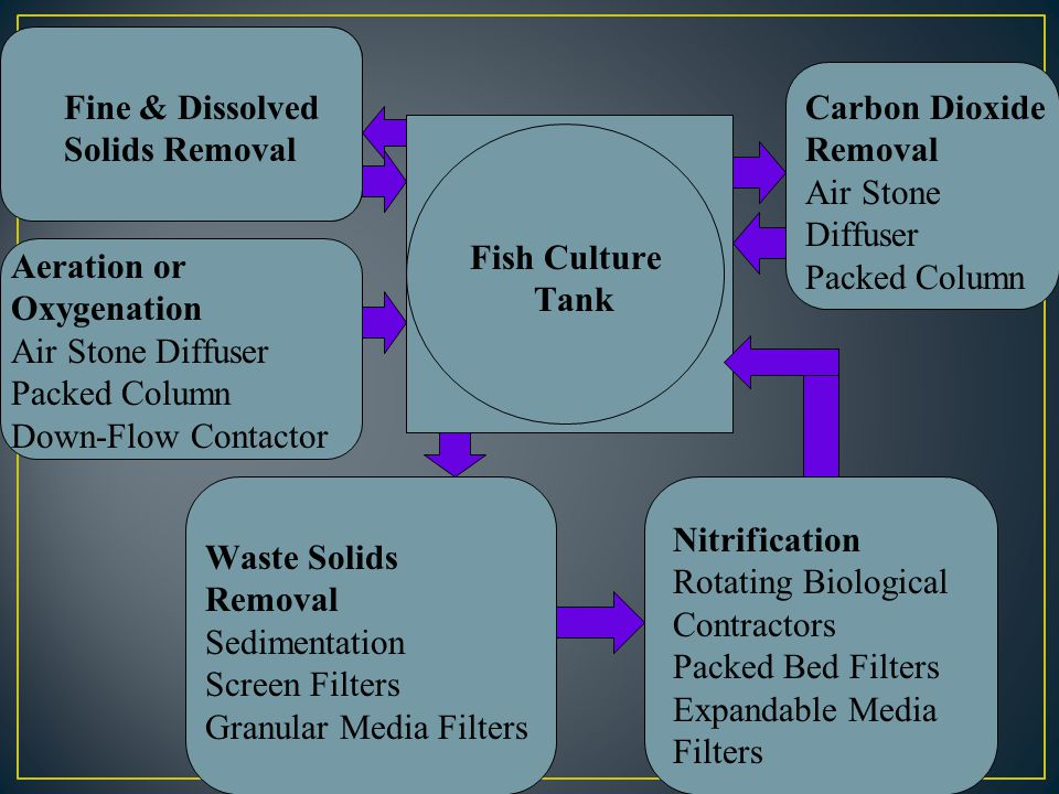 Carbon Dioxide Removal Systems : Types of aquaculture systems ppt video online download