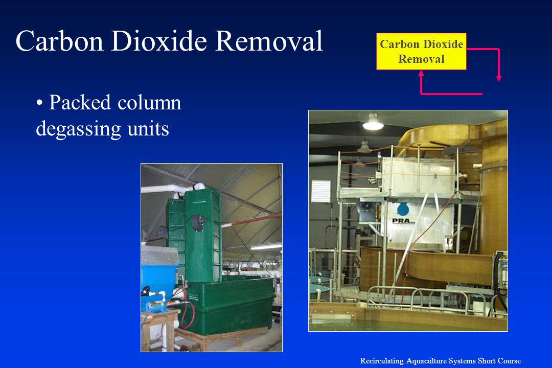 Carbon Dioxide Removal Systems : Overview of systems engineering ppt download