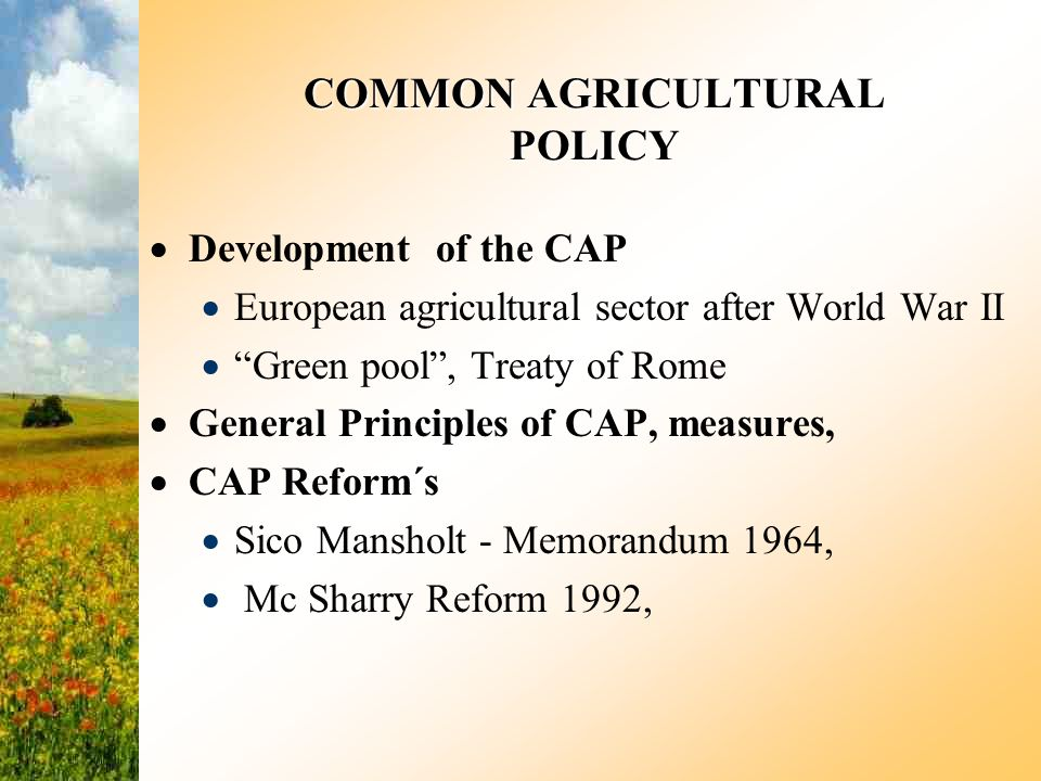 55b1c89578d COMMON AGRICULTURAL POLICY - ppt video online download
