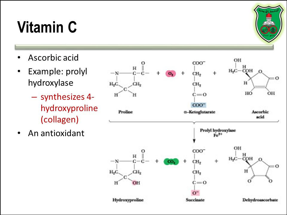 Making History With Vitamin C Powerpoint: Enzymes-cofactors Dr. Mamoun Ahram.