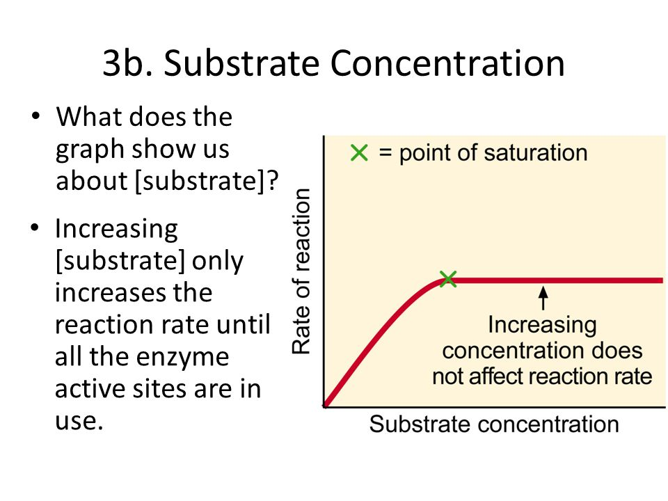 Drugs to improve focus and concentration picture 4