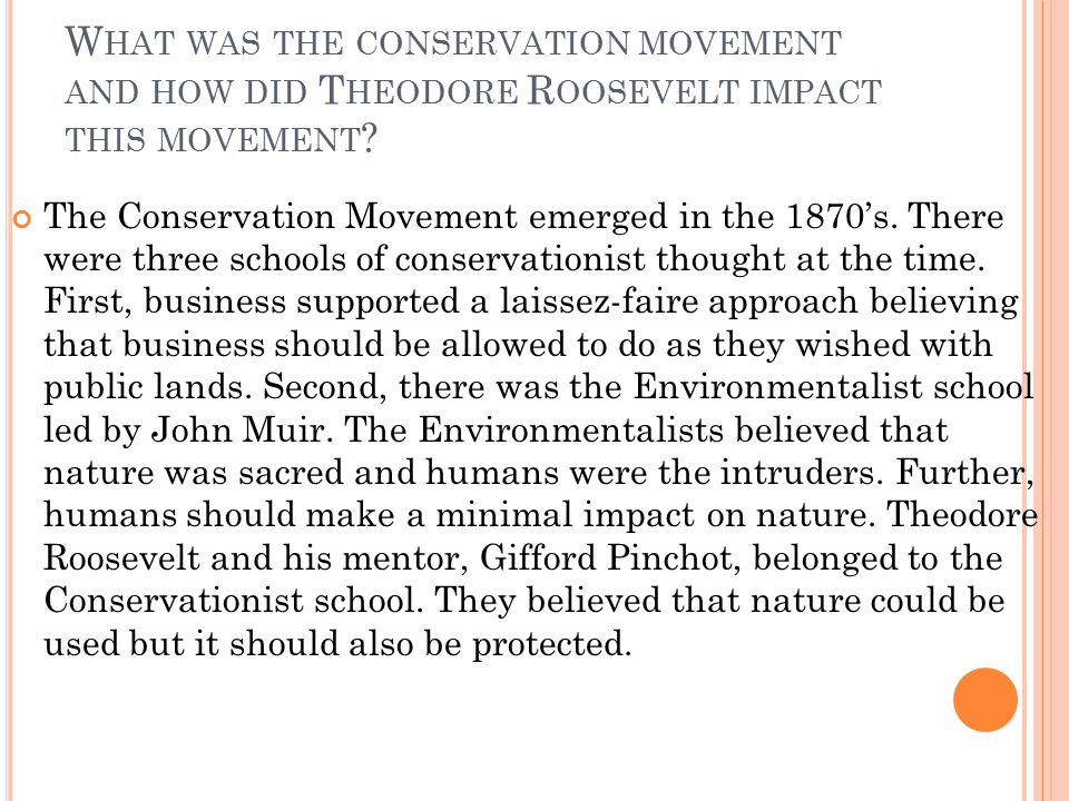 What was the conservation movement and how did Theodore Roosevelt impact this movement
