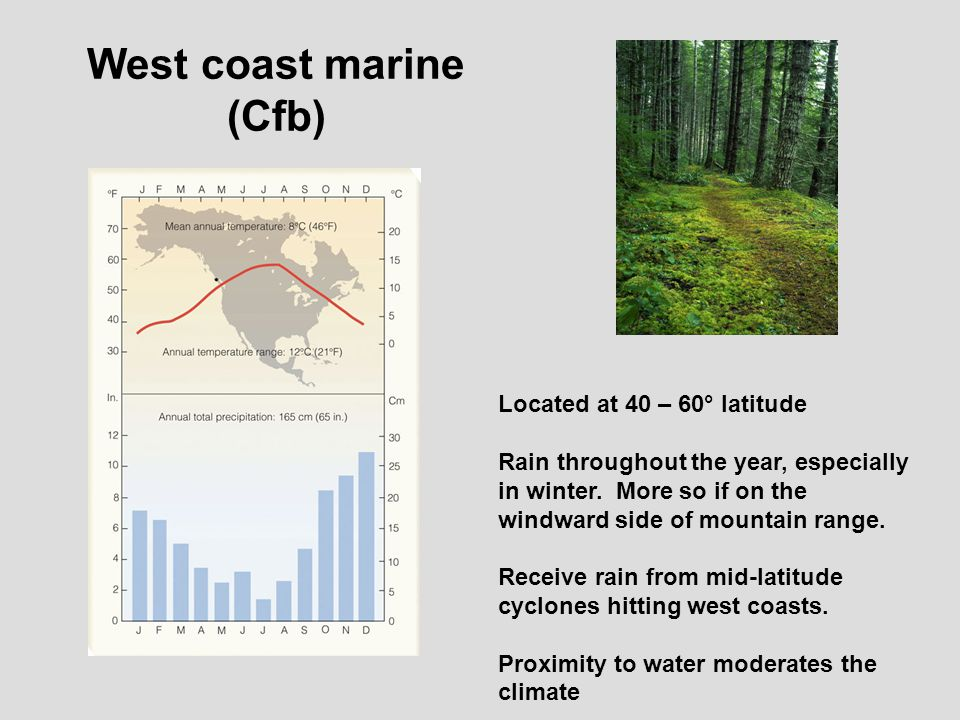 marine west coast climate essay Florida's climate and weather by dawn  the lightning belt in florida is an area from between orlando and tampa to south along the west coast to fort myers and.