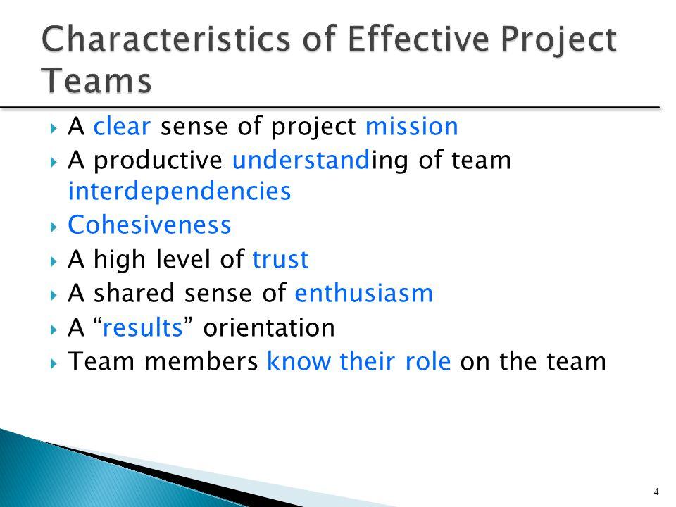 Effective project teams