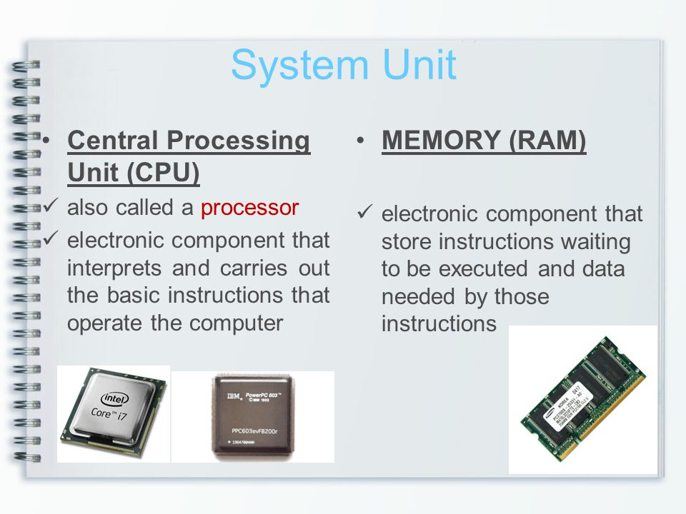 System Unit Central Processing Unit (CPU) MEMORY (RAM)