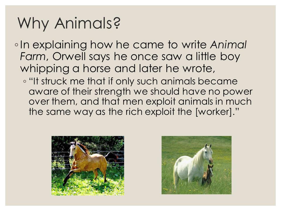the allegorical representation of man in george orwells animal farm A list of all the characters in animal farm animal farm george orwell contents the human solicitor whom napoleon hires to represent animal farm in human.