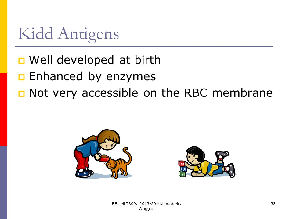 Kidd Antigens Well developed at birth Enhanced by enzymes