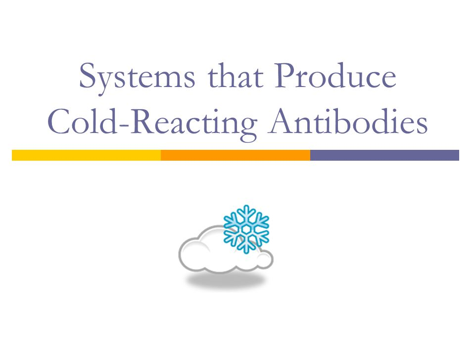 Systems that Produce Cold-Reacting Antibodies