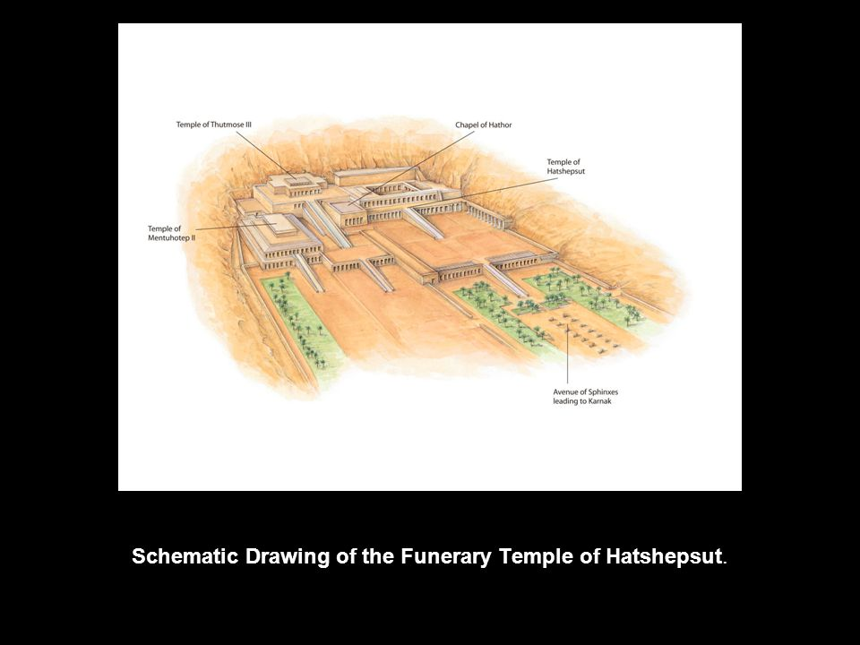 Schematic Drawing of the Funerary Temple of Hatshepsut.