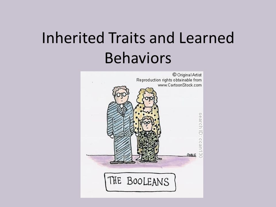 3 inherited behaviors Inherited traits vs learned behaviors learned behaviors a learned behavior is something you are able to do because someone taught you how to do it.