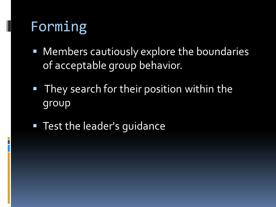 Forming Members cautiously explore the boundaries of acceptable group behavior. They search for their position within the group.