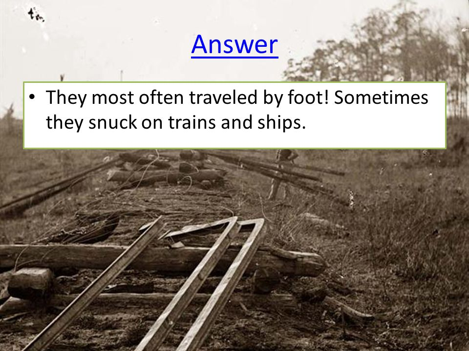 Answer They most often traveled by foot! Sometimes they snuck on trains and ships.