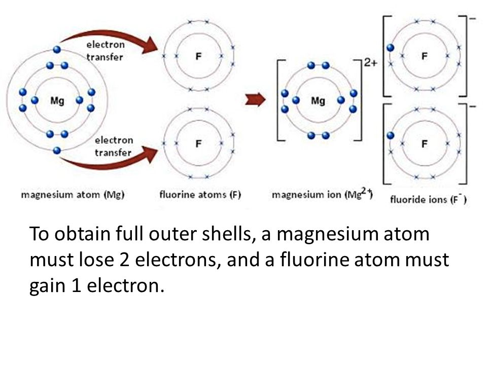 Ionic bond ppt video online download 27 to obtain full outer shells a magnesium atom must lose 2 electrons and a fluorine atom must gain 1 electron ccuart Choice Image