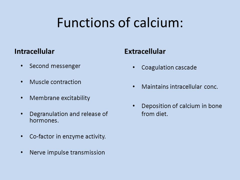 the importance and function of calcium in our diet Importance of calcium characteristics of calcium calcium is the most abundant mineral in our organism the fundamental function of this mineral is the construction.