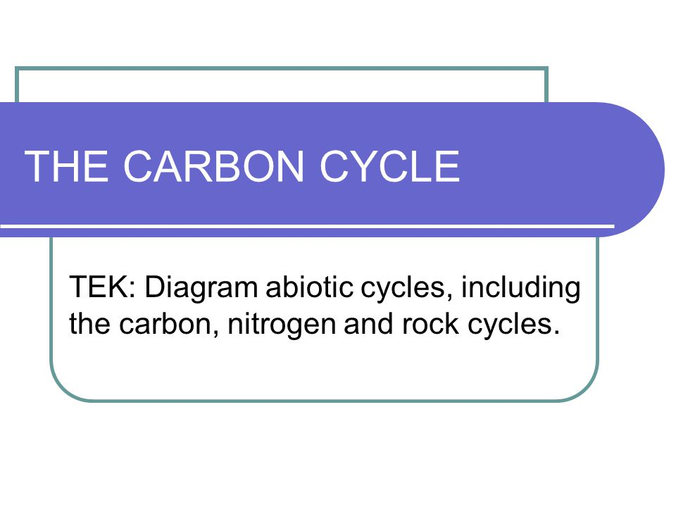 THE CARBON CYCLE TEK: Diagram abiotic cycles, including the carbon, nitrogen and rock cycles.
