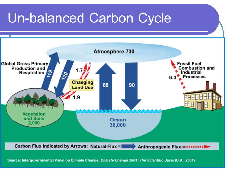 The carbon cycle tek diagram abiotic cycles including the carbon 15 un balanced carbon cycle ccuart Choice Image