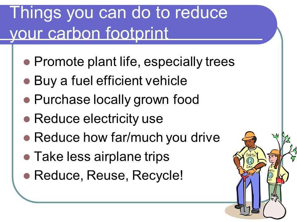 Things you can do to reduce your carbon footprint