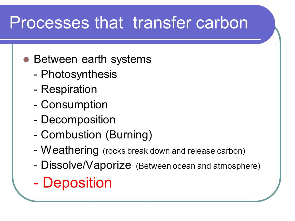 Processes that transfer carbon