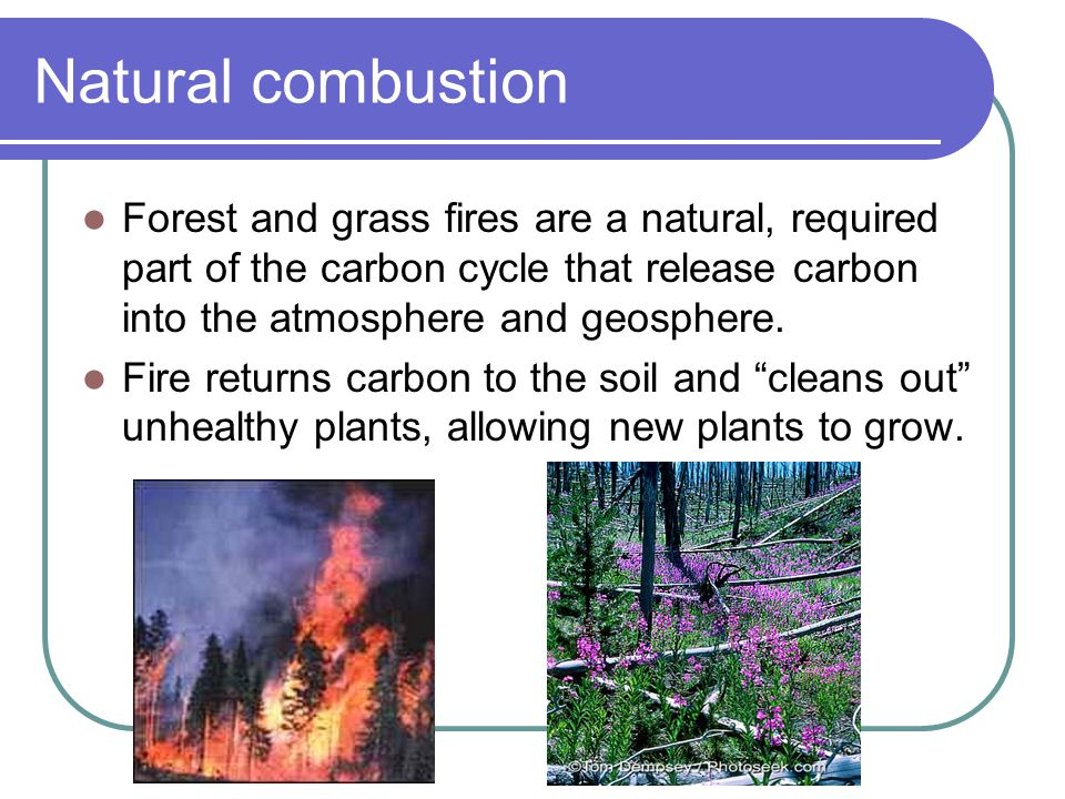 Natural combustion Forest and grass fires are a natural, required part of the carbon cycle that release carbon into the atmosphere and geosphere.