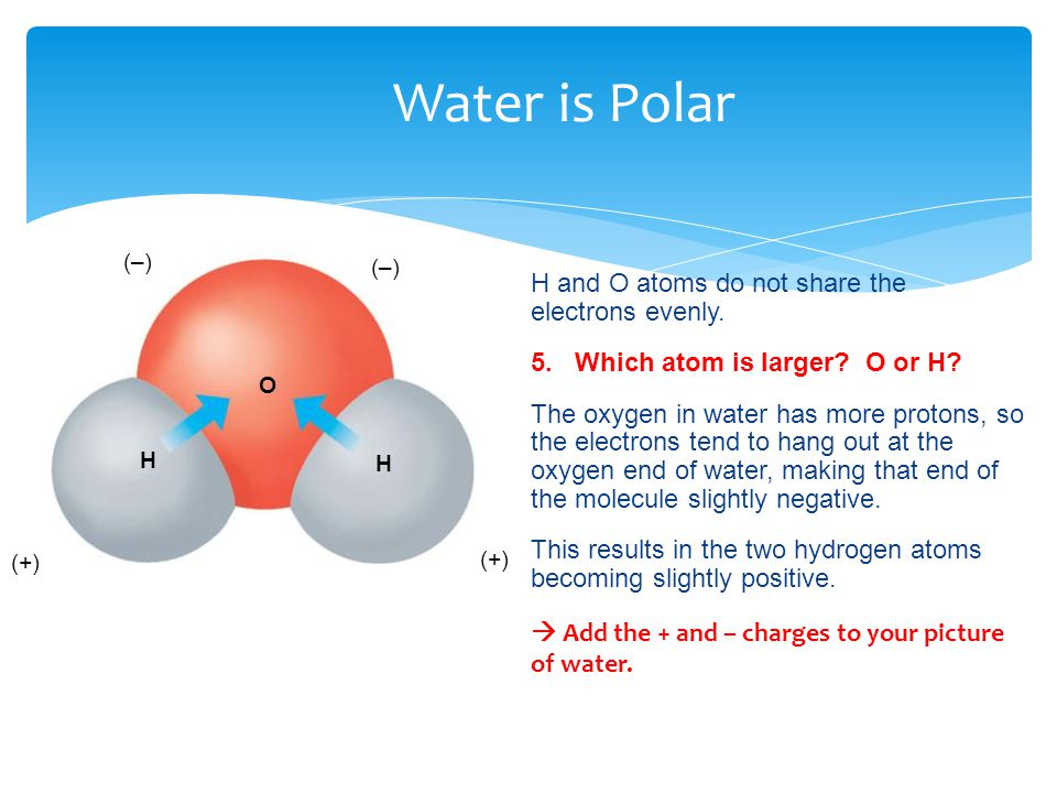Water is Polar H and O atoms do not share the electrons evenly.