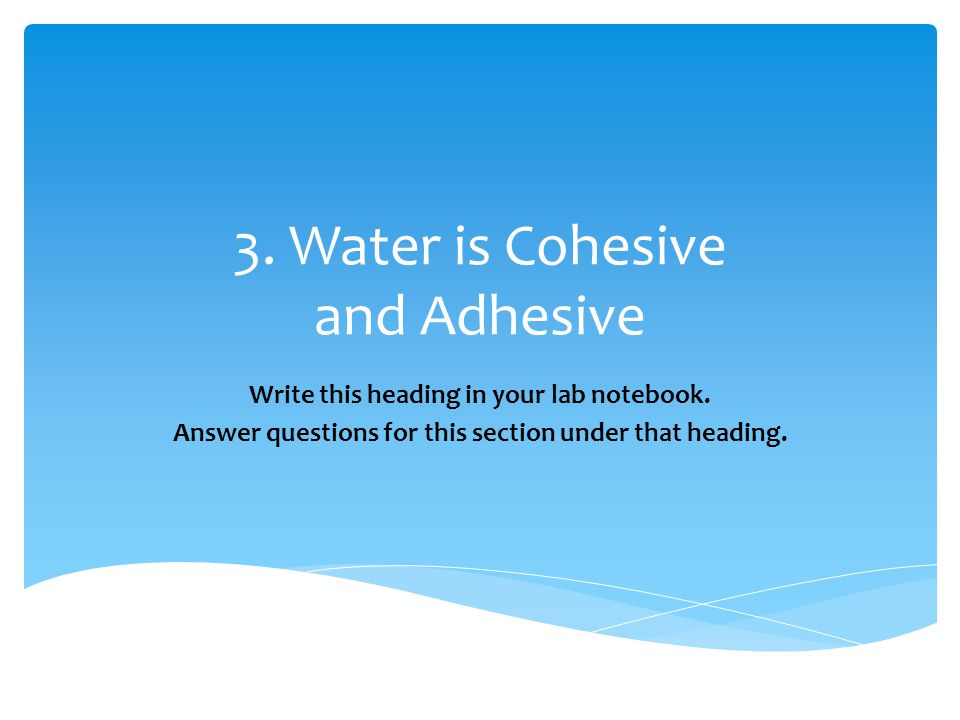 3. Water is Cohesive and Adhesive