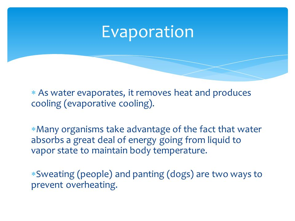 Evaporation As water evaporates, it removes heat and produces cooling (evaporative cooling).
