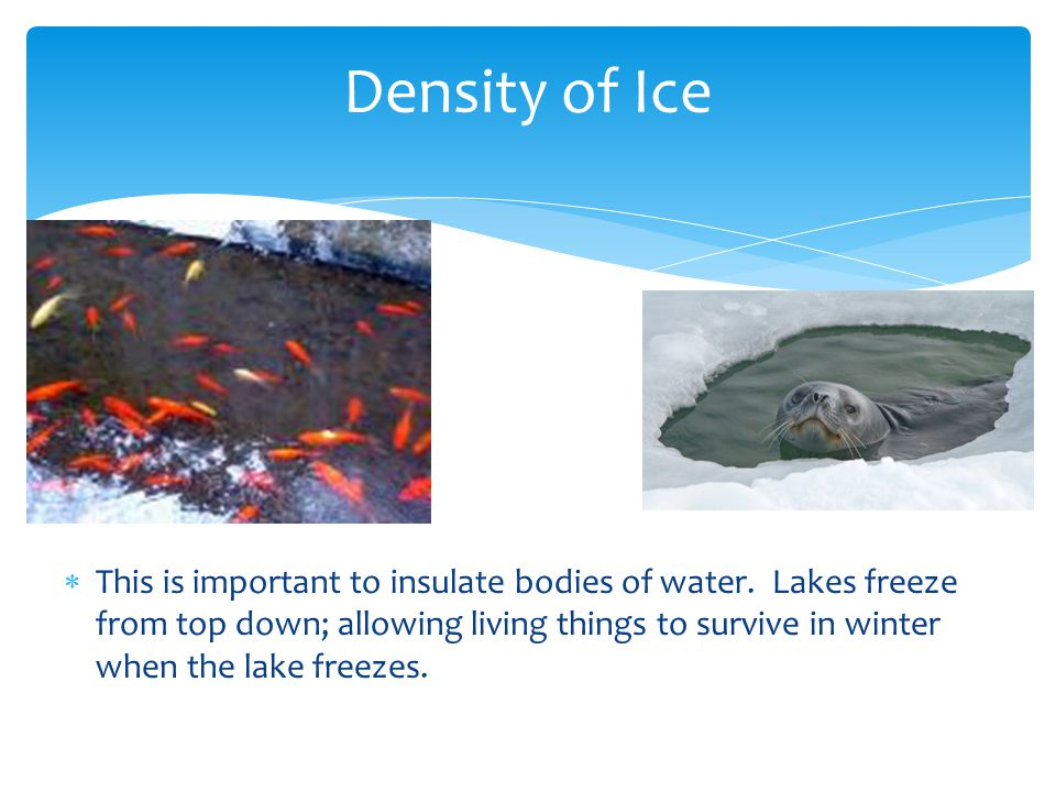 Density of Ice