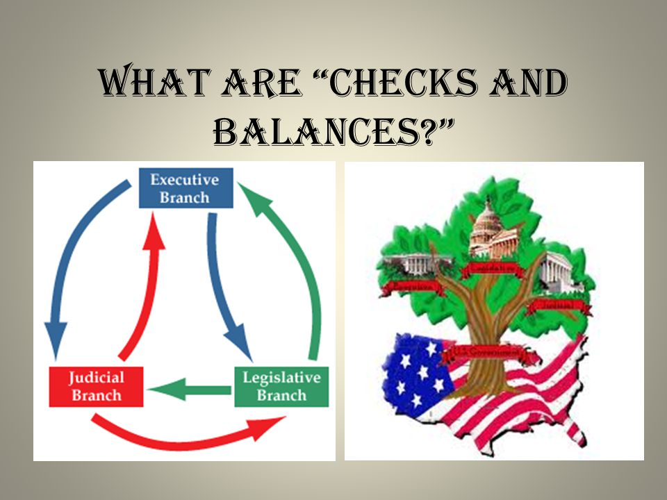 What are checks and balances