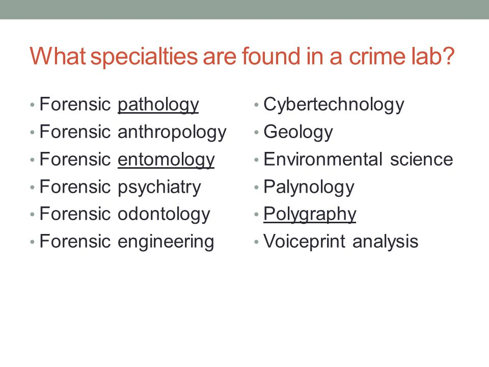 What specialties are found in a crime lab