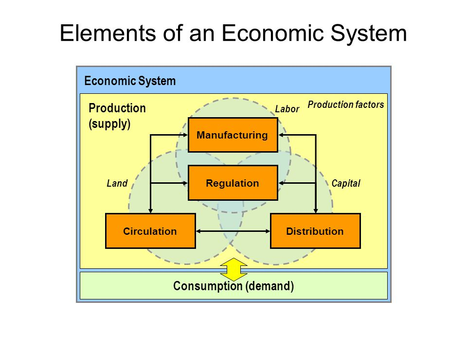 Elements of an Economic System