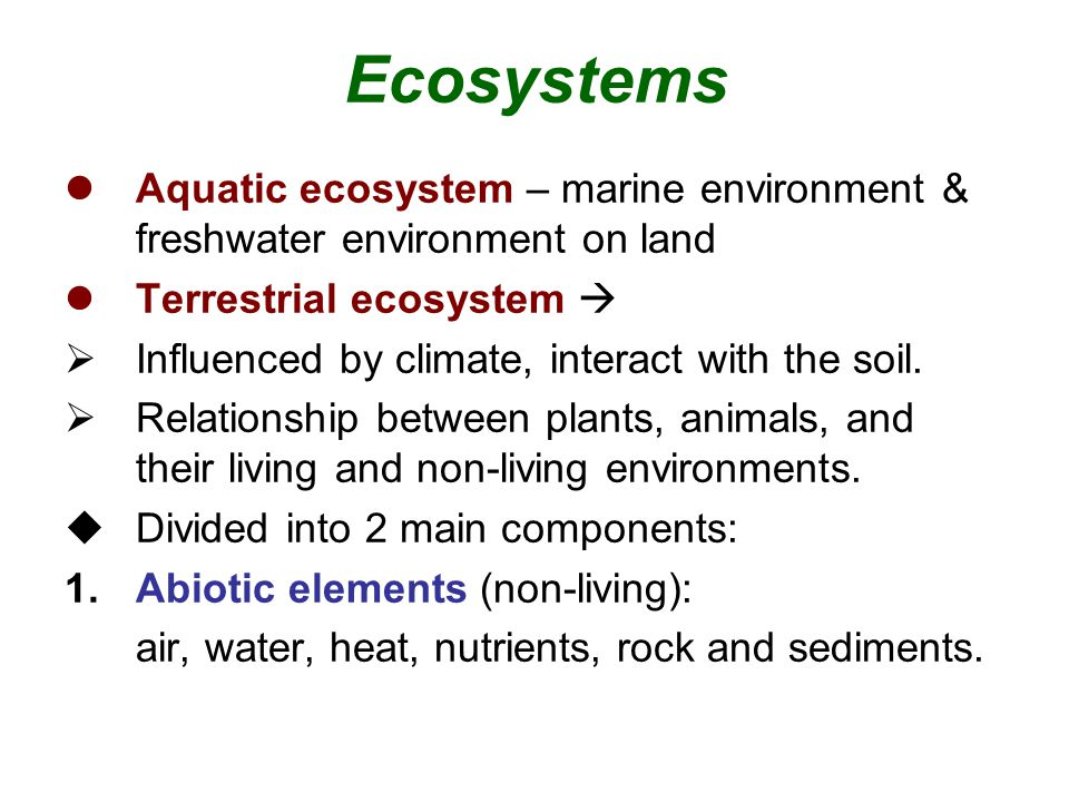Ecosystems Aquatic ecosystem – marine environment & freshwater environment on land. Terrestrial ecosystem 
