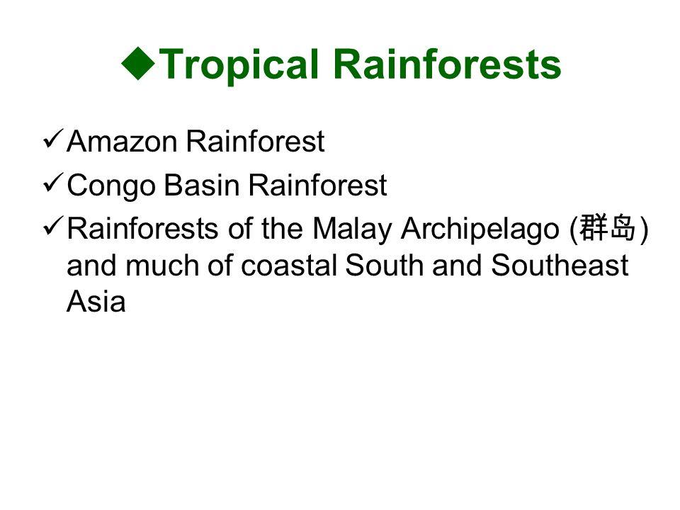 Tropical Rainforests Amazon Rainforest Congo Basin Rainforest