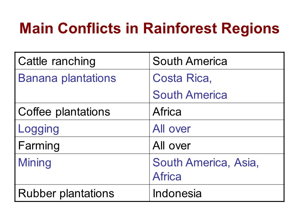 Main Conflicts in Rainforest Regions