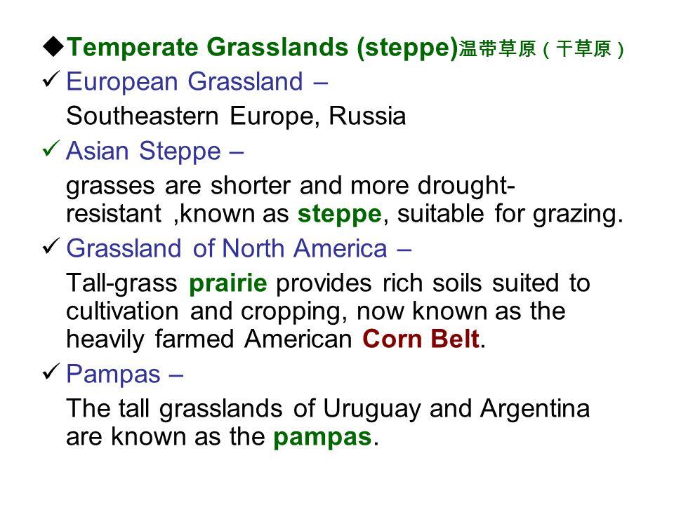 Temperate Grasslands (steppe)温带草原(干草原)