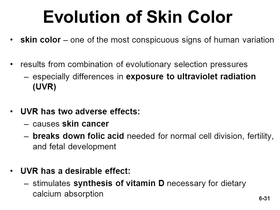 the evolution of skin colour Research on the evolution of skin color in humans was avoided by scientists for  many years skin color is worthy of scientific investigation,.