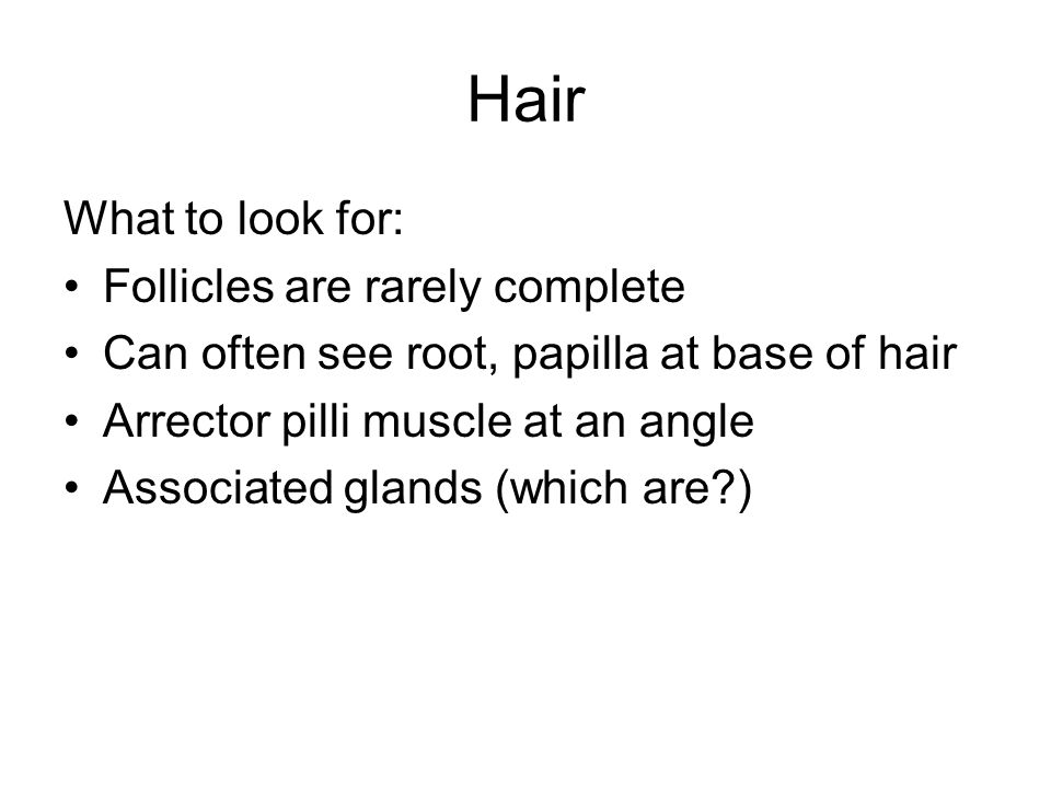 Hair What to look for: Follicles are rarely complete