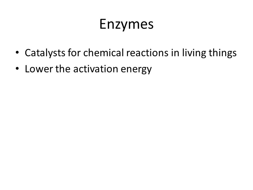 Enzymes Catalysts for chemical reactions in living things