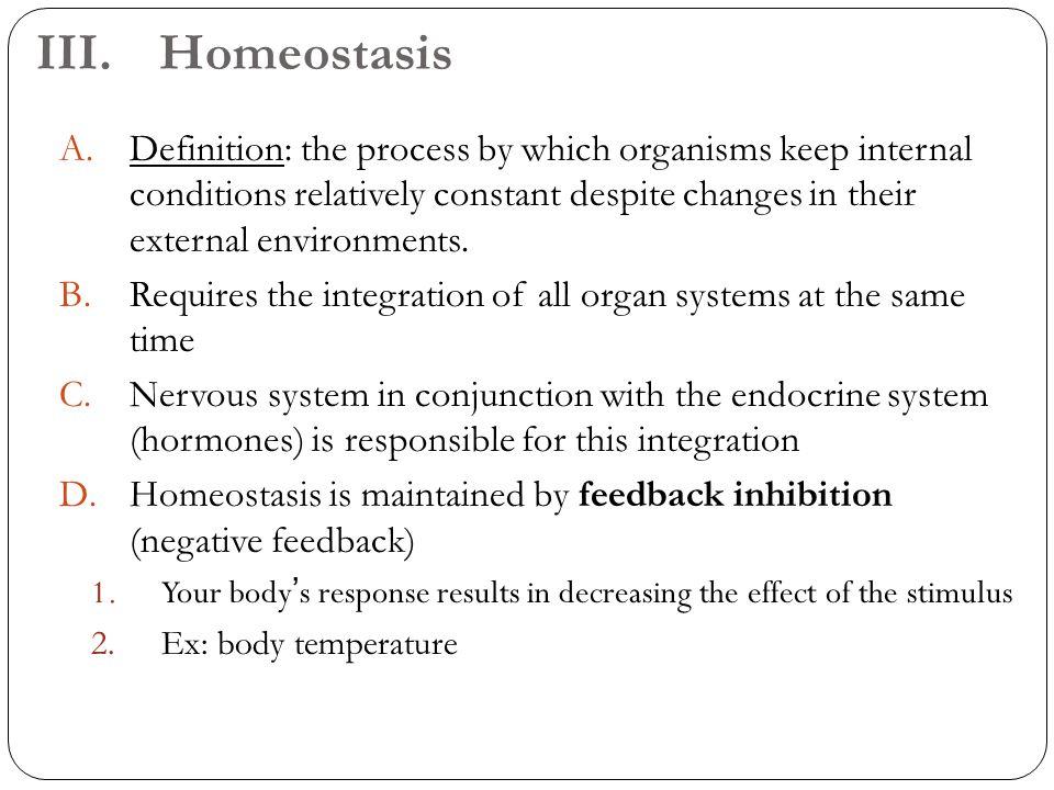 Unique Define Homeostasis Anatomy Photo - Anatomy And Physiology ...