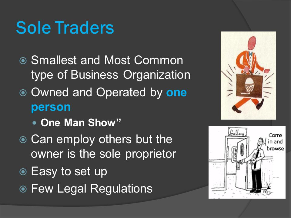 Chapter 3 –forms of Business Organisation - ppt video online download